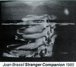 Catalogue image from Joan Brassil's Stranger Companion, one of the installations at the Art Gallery of NSW.