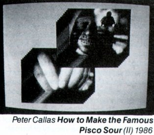Catalogue image from Peter Callas's How to Make the Famous Pisco Sour (1986), one of the installations at the Art Gallery of NSW.